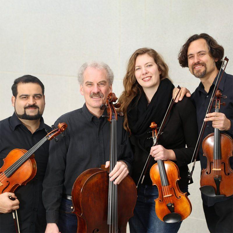Circadian String QuartetSq